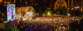 Sex gripna efter ungdomsfestival