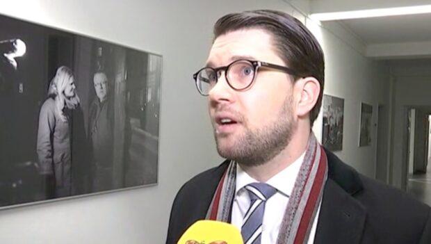 Åkesson uppmanar till folkomröstning om EU-medlemskap