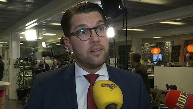 """Åkesson: """"Klart det är olyckligt"""""""