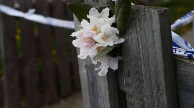 Polisen i Blekinge utreder nu ett misstänkt mord på en 8-årig flicka. Foto: Sven Lindwall