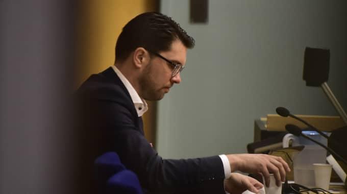 Jimmie Åkesson i rättssalen. Foto: Robin Aron