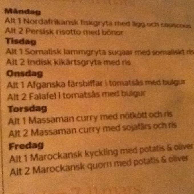 """""""Det finns inte ens tillstymmelse till mat som barnen är vana vid"""", säger SD-politikern Agneta Colantoni. Foto: Privat"""