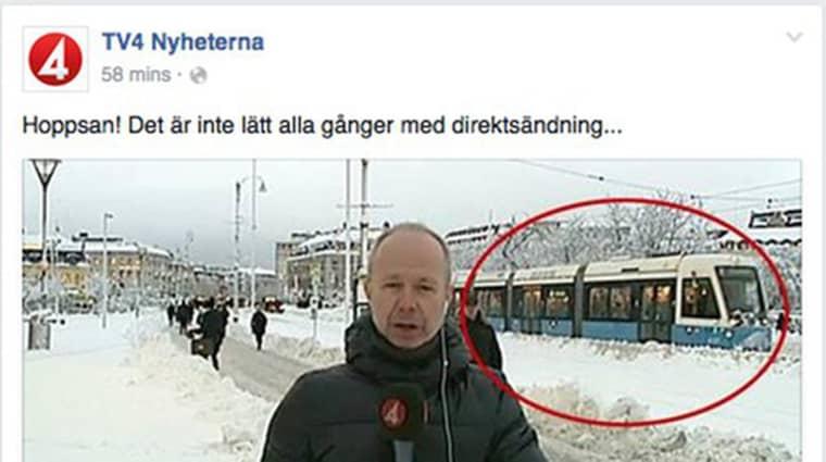 TV4-reporterns blunder blev tisdagens superviral. Foto: SKÄRMDUMP FACEBOOK