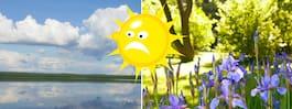 Väderbeskedet: