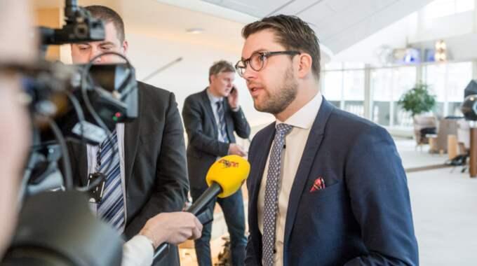 Sverigedemokraternas partiledare Jimmie Åkesson. Foto: Pelle T Nilsson