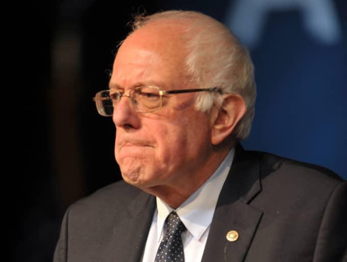 Bernie Sanders allra mest inbitna fans har nu möjlighet till ett evigt avtryck av den 74-årige Vermont-senatorn – i form av en gratis tatuering. Foto: Polaris/Phil Mcauliffe