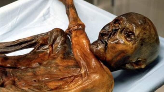 1991 hittades snömannen Ötzi i en glaciär i de italienska Alperna. Foto: Wiki Commons