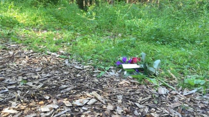 """Vid sidan om joggingspåret ligger en ensam blomma med en lapp. """"Jag tänker på dig och dina anhöriga"""" står det. Foto: Max Sohl Stjernberg"""