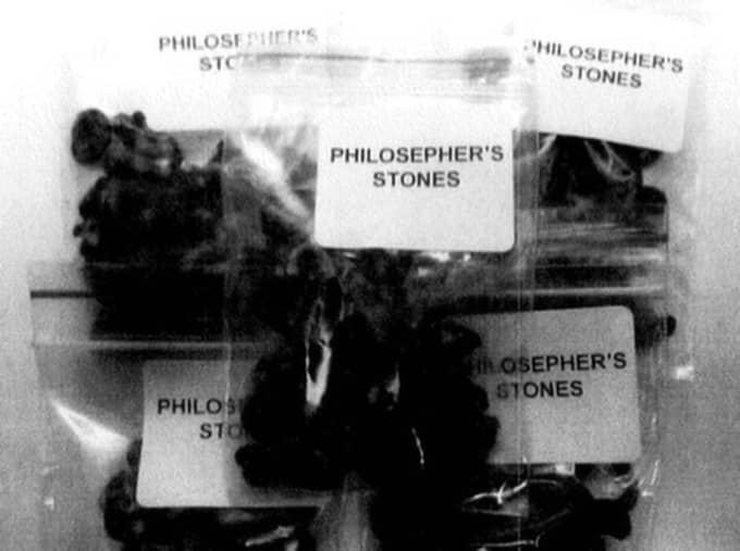 """Tjänstemannen beställde knarksvampar vid namn """"PHILOSEPHER´S STONES"""" på internet."""