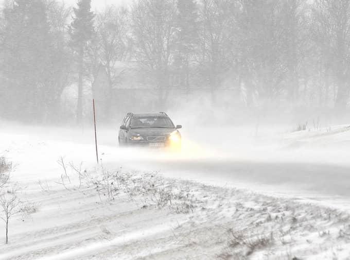 Foto: Lasse Svensson