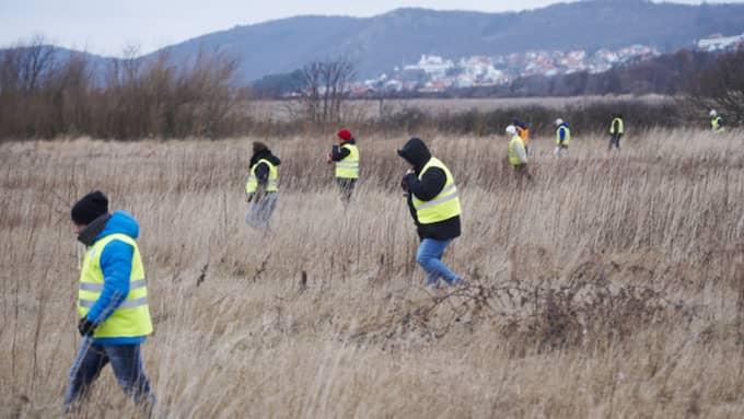 Många berördes av Bengts öde och ställde upp när Missing people genomförde skallgång i området kring Mölle där han senast sågs för ett år sedan. Foto: Stefan Lindblom/ Hbg-Bild