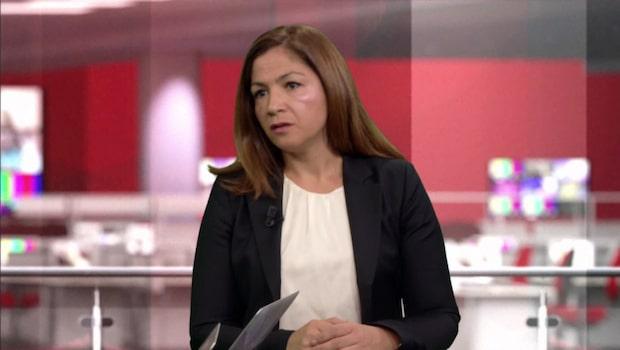 Gulan Avci: ''regeringen misslyckats att få fler människor kommer in riktiga jobb''