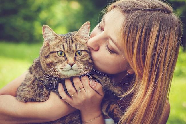 Husdjur kan förbättra såväl hälsan som det sociala livet, samt skapa lycka och ge livskvalité.