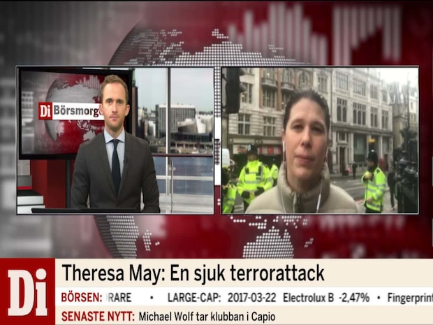 Flera gripna i polisräder efter dådet i London