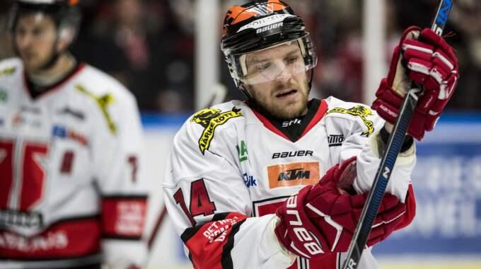 Tom Wandell. Foto: Petter Arvidson / BILDBYRÅN