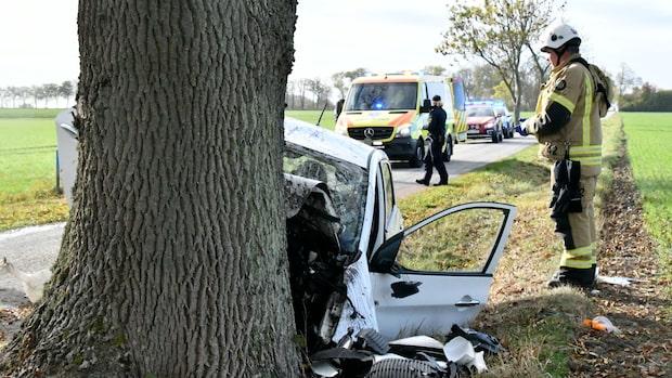21-årig man avled när hans bil körde in i träd