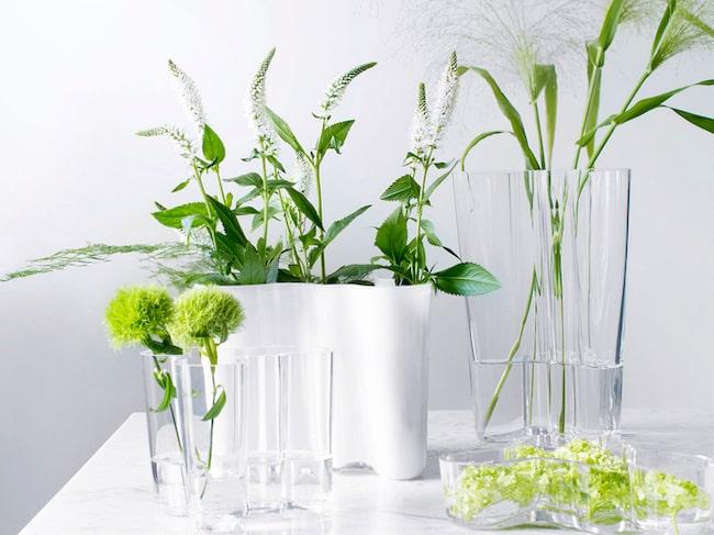 Enligt vårat test handlar det om tusenlappar att spara in. Läs nedan. Här klassiska IIttala-vasen designad av Alvar Aalto.
