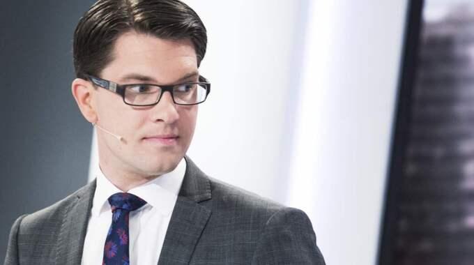 Sverigedemokraternas partiledare Jimmie Åkesson. Foto: Olle Sporrong