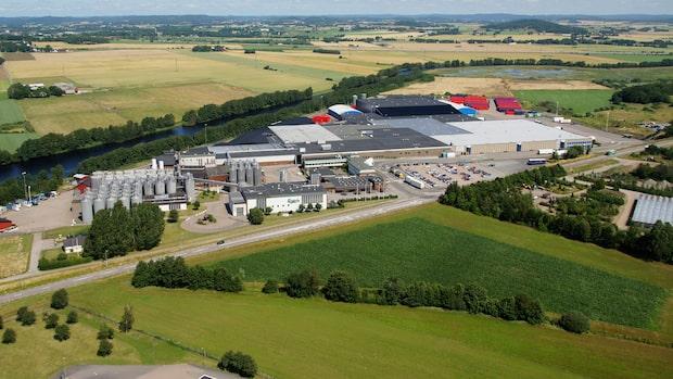 Kolsyreutsläpp på Carlsbergs bryggeri i Falkenberg