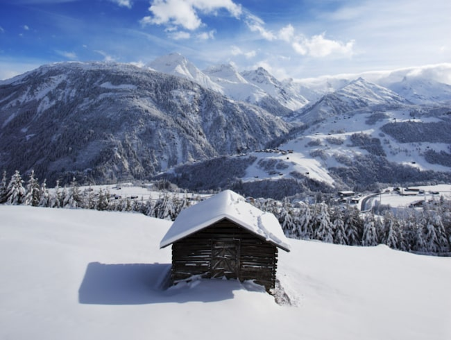 <span>Det har snöat nästan en meter det senaste dygnet och vädret har just slagit om till klarblå himmel.<span></span></span>