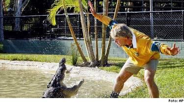 Steve Irwin blev 44 år. Han gillade vilda spektakel med vilda djur. Han blev älskad av tv-publken världen över. Men seriösa naturvänner är mycket kritiska till hans naturdokumentärer.
