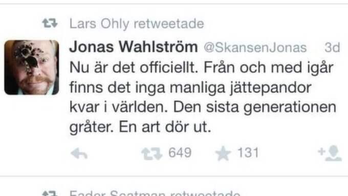 Falsk Jonas Wahlström.