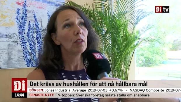 Chefsekonomen Nordea: Det krävs för att nå hållbarhetsmålen