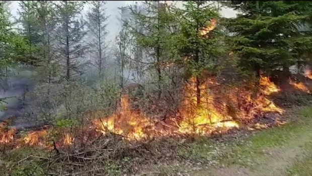Stor skogsbrand i Småland