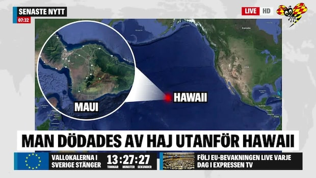 Man dödad av haj på Hawaii