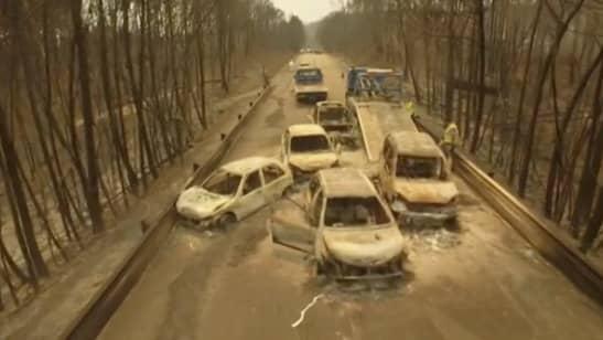 Många blev innebrända i sina bilar när den våldsamma skogsbranden drog fram i Portugal på söndagen.