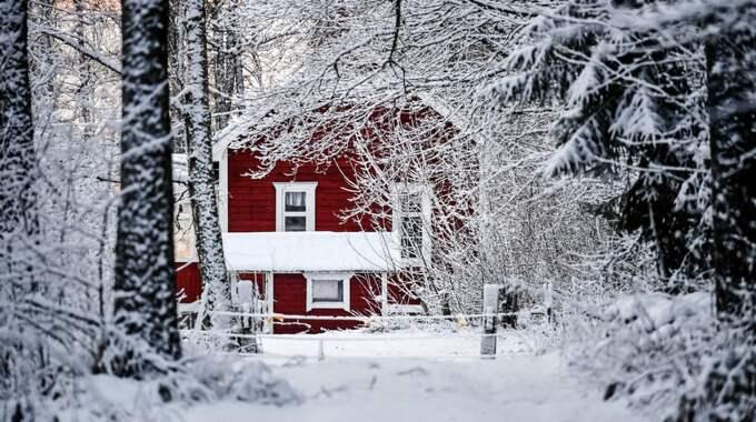 Stugan där pappan hittades död. Foto: Alex Ljungdahl