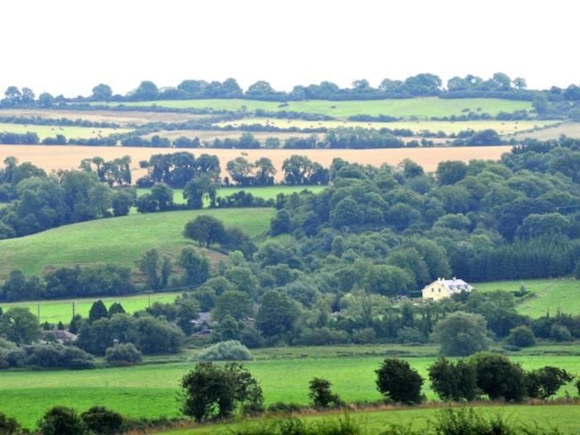 Boyne Valley är det gröna, lummiga landskapet som omger floden Boyne.