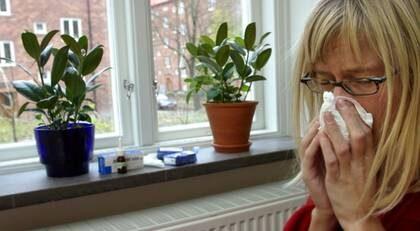 Stanna hemma. Årets influensa kommer att bli den värsta på många år. Särskilt äldre människor är sårbara och uppmanas att vaccinera sig.