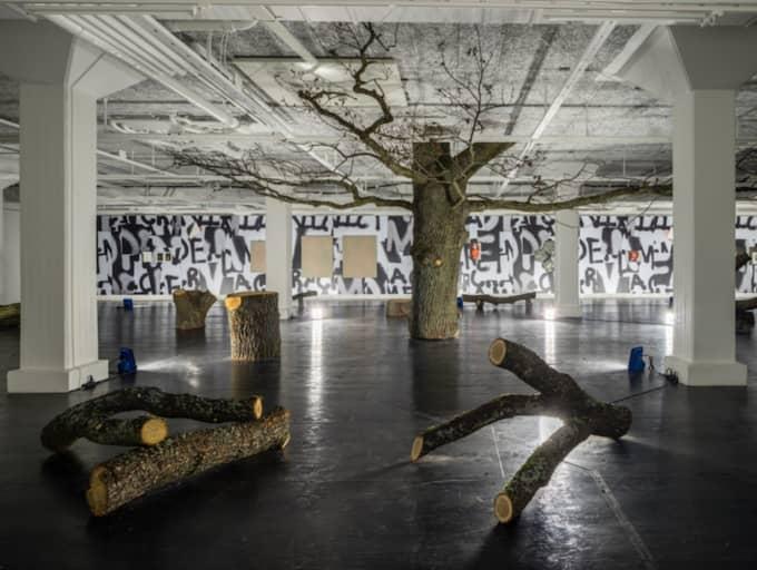 KRONAN På VERKET. Eken på Tensta konsthall är utställningens clou. Foto: Jean-Baptiste Beranger