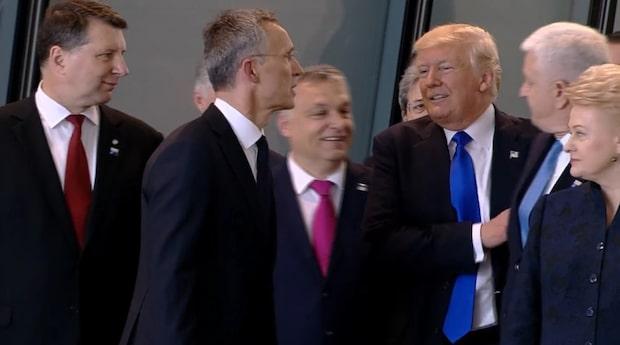 Här knuffar Trump undan Montenegros premiärminister