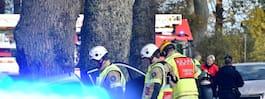 JUST NU: Bil har kört in i träd – allvarlig olycka