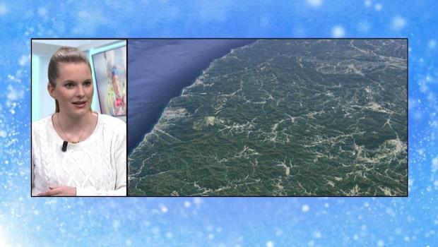 """Meteorologen: """"Vinden i Pyeongchang är värst"""""""