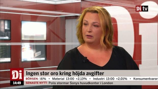 """Fastighetsmäklarförbundets vd: """"Slutsatsen är att hushållen är starka ekonomiskt"""""""
