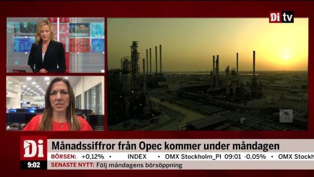 Experten Thina Saltvedt om oljan - osäkert läge i Saudiarabien