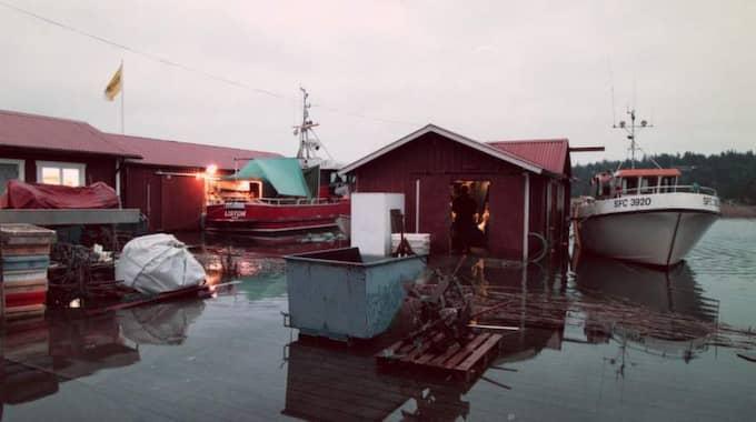 """Vänern svämmar över. Efter den stora översvämningen 2000-2001 föreslog en utredning omfattande statliga åtgärder. Nu hävdar regeringen i stället att översvämningsrisken är """"ett kommunalt ansvar"""". Det är ett märkligt resonemang som tyder på att ansvariga i Stockholm har dålig kunskap om riskerna. Foto: Allan Karlsson"""