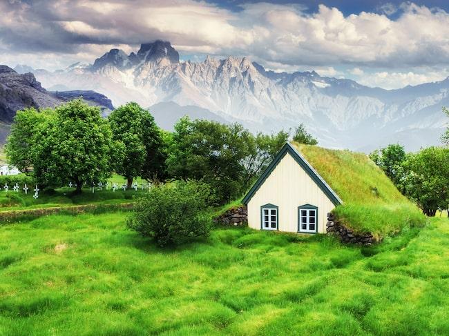 Ett museum har tagit plats i den gamla grästäckta kyrkan på Island.