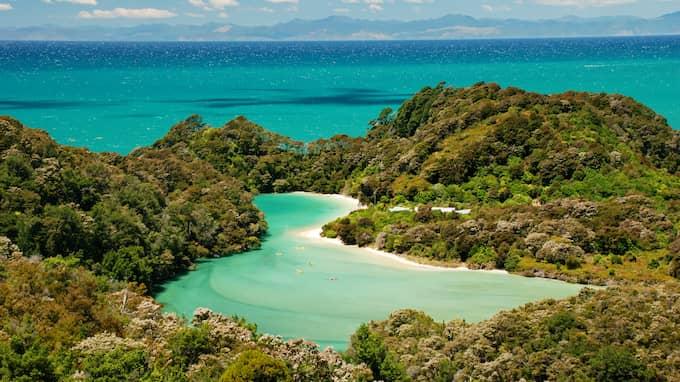 Maria Rydén har bland annat besökt Nya Zeeland under betald arbetstid. Foto: SHUTTERSTOCK