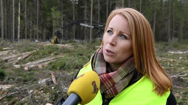 """Annie Lööf: """"Skogen var min förskola"""""""