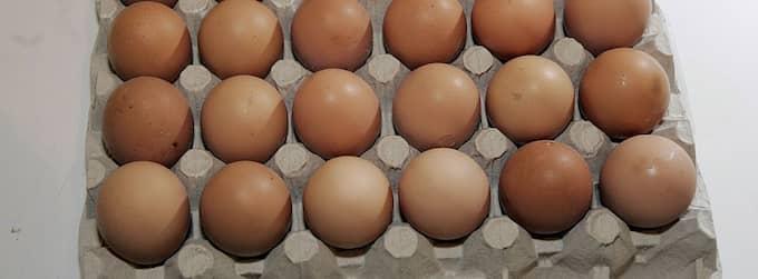 Den 35-årige mannen i Lerum blev så förbannad över att ungdomarna kastade ägg på hans hus att han följde efter dem för att hämnas. Han fick tag på ett ägg från en av ungdomarnas ryggsäck och krossade det i ansiktet på pojken. Foto: Sven Lindwall