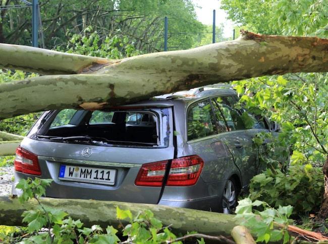Det går att spara en hel del pengar på bilförsäkringen. Försäkringsexperten mats Sjögren ger sina bästa tips.