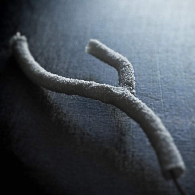 Konstgjort blodkärl av textil. Foto: Henrik Bengtsson