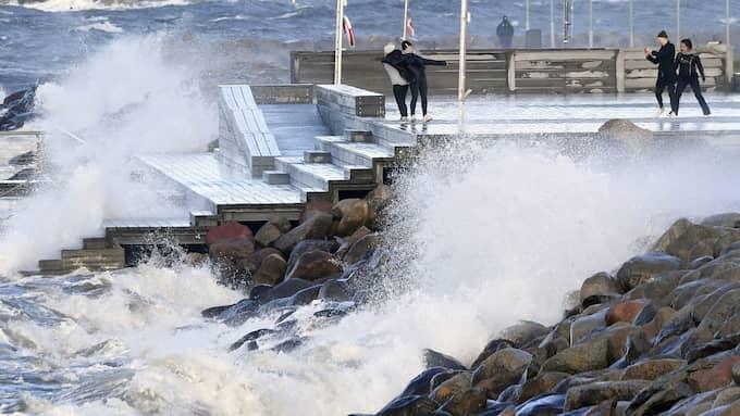 Höga vågor i Malmö – och på Östersjön väntas vågorna bli fyra meter höga. Foto: JOHAN NILSSON/TT / TT NYHETSBYRÅN