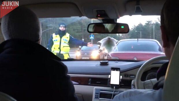 Kolla noga och se om du upptäcker vad polisen missar