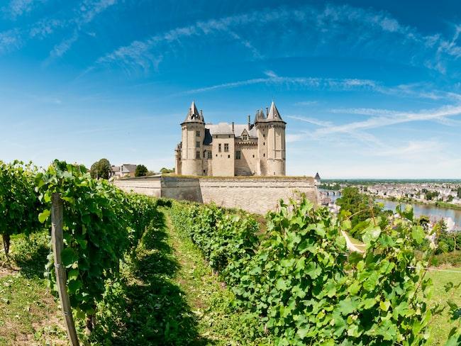 Chenin blanc odlas främst i centrala Loiredalen i Frankrike. Vinerna därifrån är ofta syrliga med smak av omogna gröna äpplen.