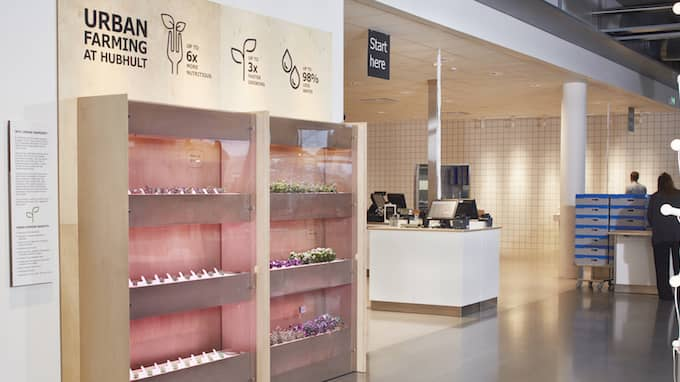 Till en början kommer man testa att odla örter och sallader hos Hubhult i Malmö. Foto: IKEA